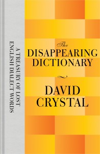 9781447282792The Disappearing Dictionary_6